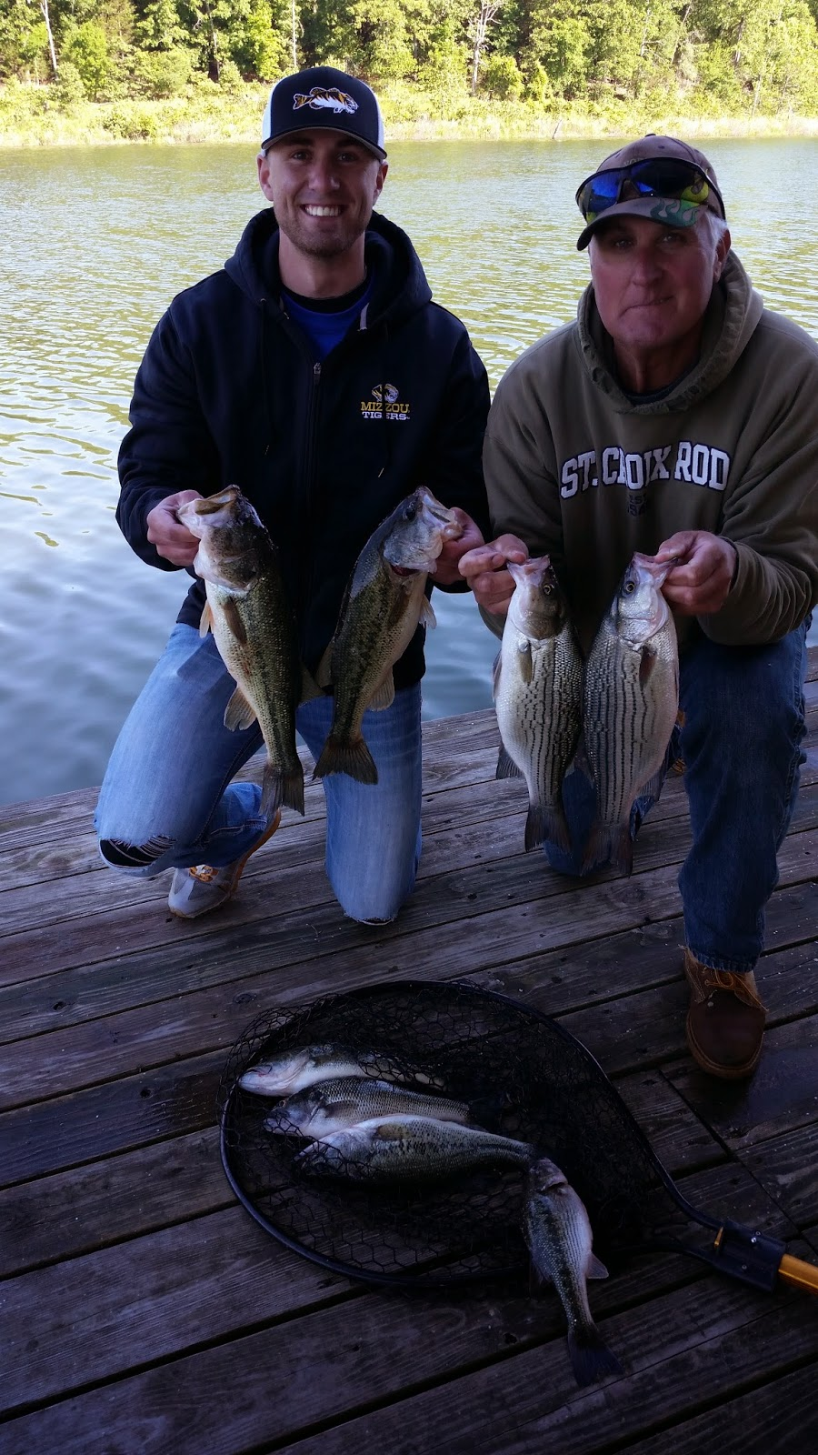 Norfork lake fishing report by hummingbird hideaway resort for Lake norfork fishing report
