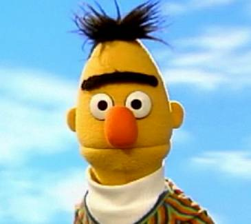 Bert.jpg