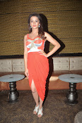 Surveen Chawla latest glamorous photos-thumbnail-17