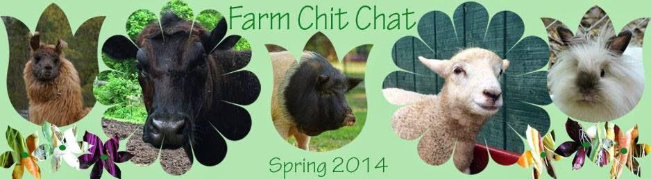 Farm Chit Chat
