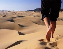 O deserto...