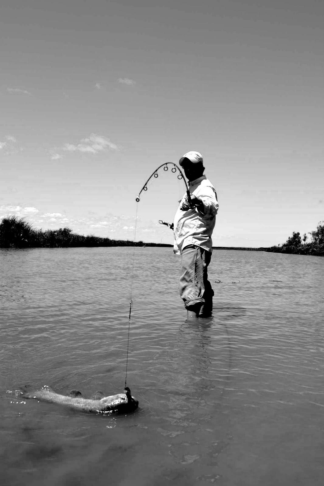 Pesca en el Río de la Plata: Pesca de tarariras en Oyarvide
