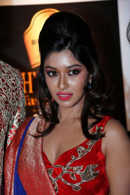 payal ghosh wallpapers,payal ghosh hot pictures