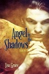https://www.goodreads.com/book/show/7297559-angel-in-the-shadows