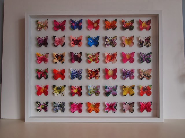 diy framed butterfly art