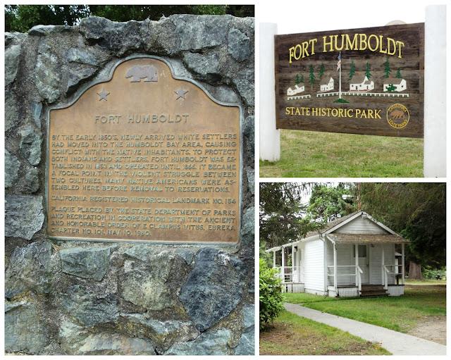 Summer, Fort Humbolt Eureka, ca