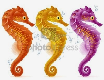 Hippocampus (Sea Horse): symbol of fidelity. World's most faithful animal.