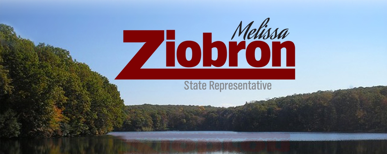 Melissa Ziobron ~ 34th District