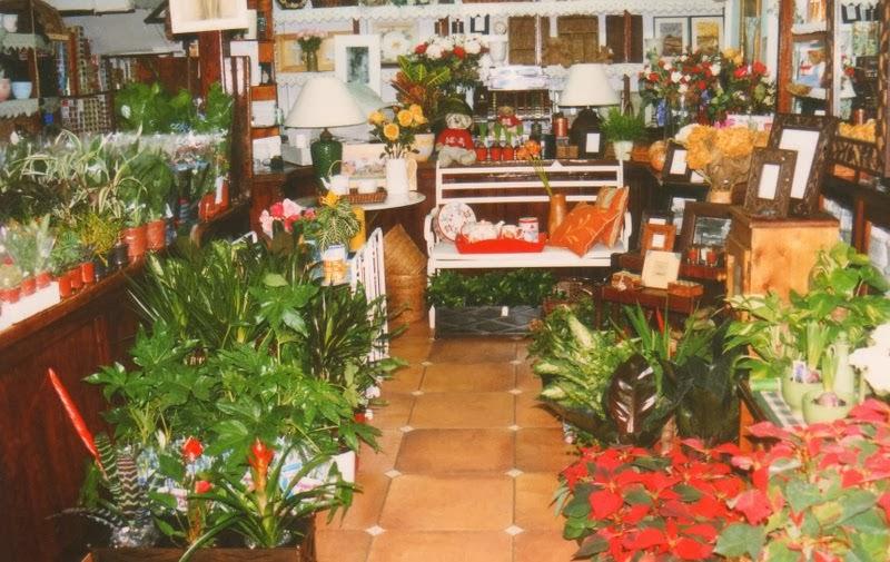 La tienda de la Plaza