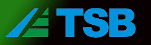 Pagina de TSB