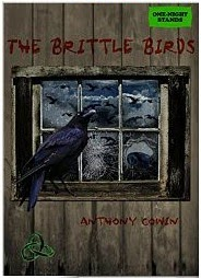 The Brittle Birds by Anthony Cowin is now available on all Amazon platforms
