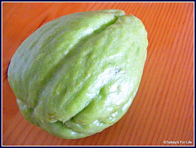Turkish seasonal food Rhodes Squash