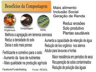Compostagem: recuperação de solos contaminados