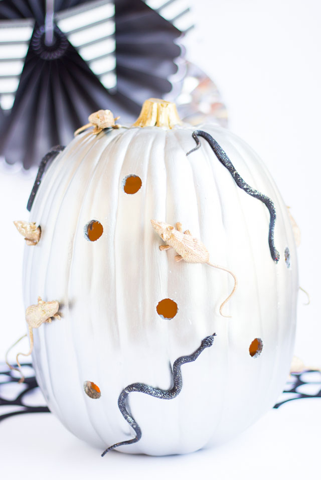 Spooky snake and mice pumpkin decorating idea!