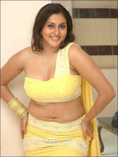 Boobs of namitha