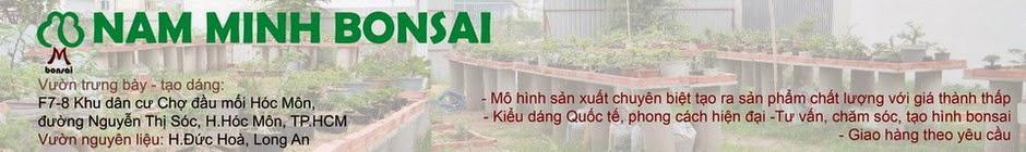 NAM MINH BONSAI