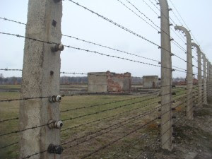 Concentration Camps Opening Across Greece.  Birkenau-fence-300x225