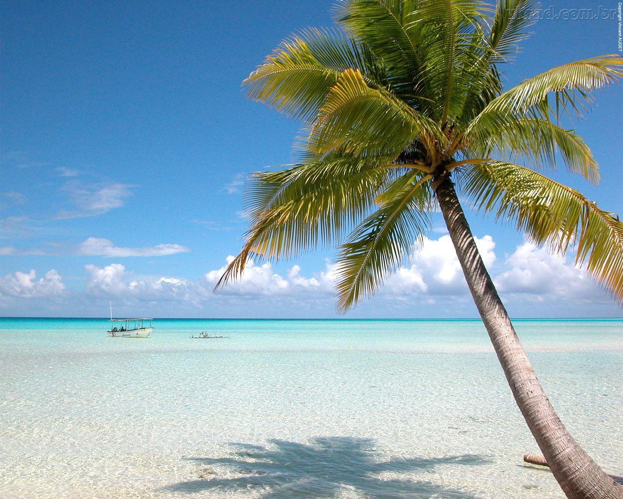 refletindo na praia papel - photo #13