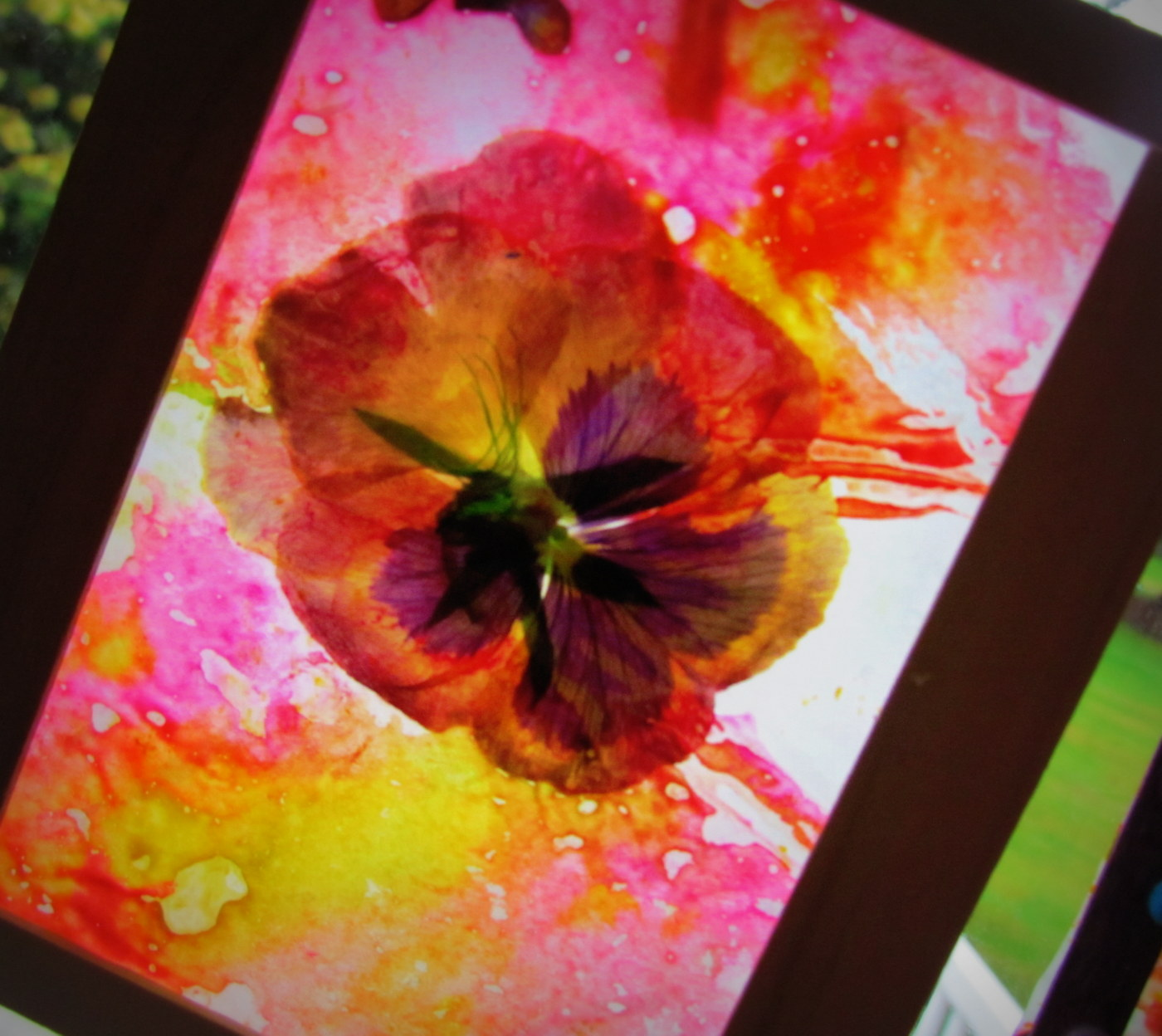 Learn to grow stained glass craft dried flowers leaves for Dried flowers for crafts