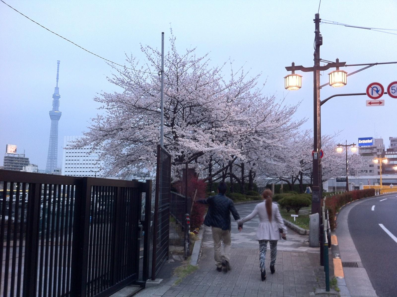 Love under the yozakura, with the Tokyo SkyTree, Taito ward, Tokyo.