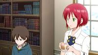 Akagami no Shirayuki-hime Episode 11 Subtitle Indonesia