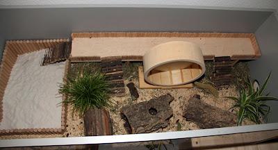 naturnahe hamstergehege eigenbau k figverbund mit permanentauslauf. Black Bedroom Furniture Sets. Home Design Ideas