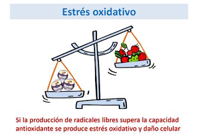 Enfermedad renal, estrés oxidativo