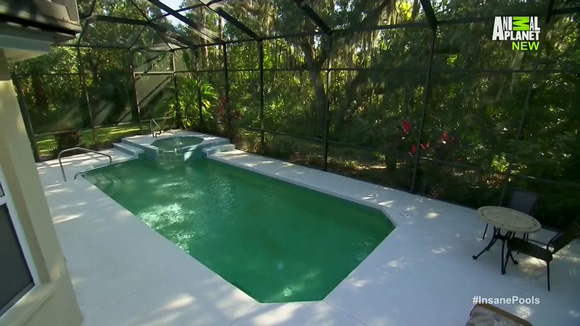 Insane pools off the deep end daily tv shows for you for Pool show tv