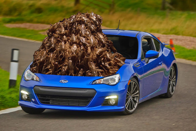 toyobaru crickets, scion, toyota, subaru, engine, silnik, problemy
