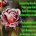Çiçekli Sevgiliye Resimli Aşk Mesajlari