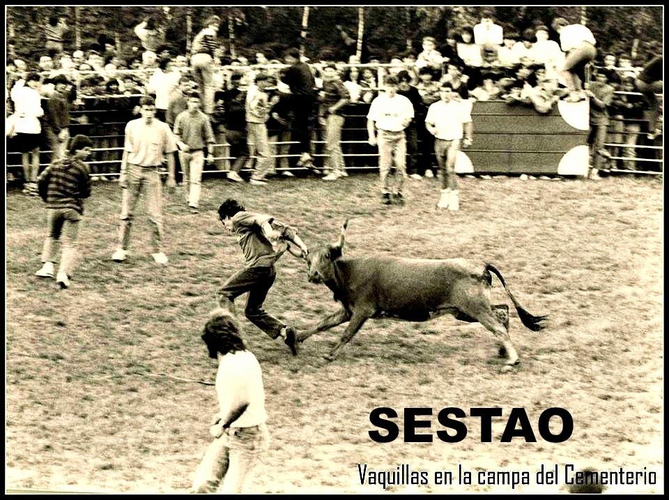 SESTAO VAQUILLAS
