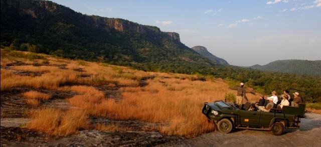 lujo safari India