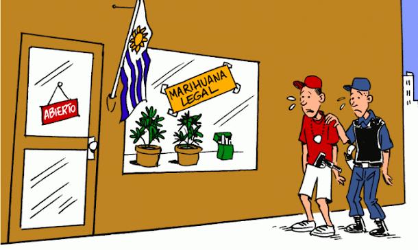 Uruguai aprova venda de maconha a brasileiros e outros estrangeiros