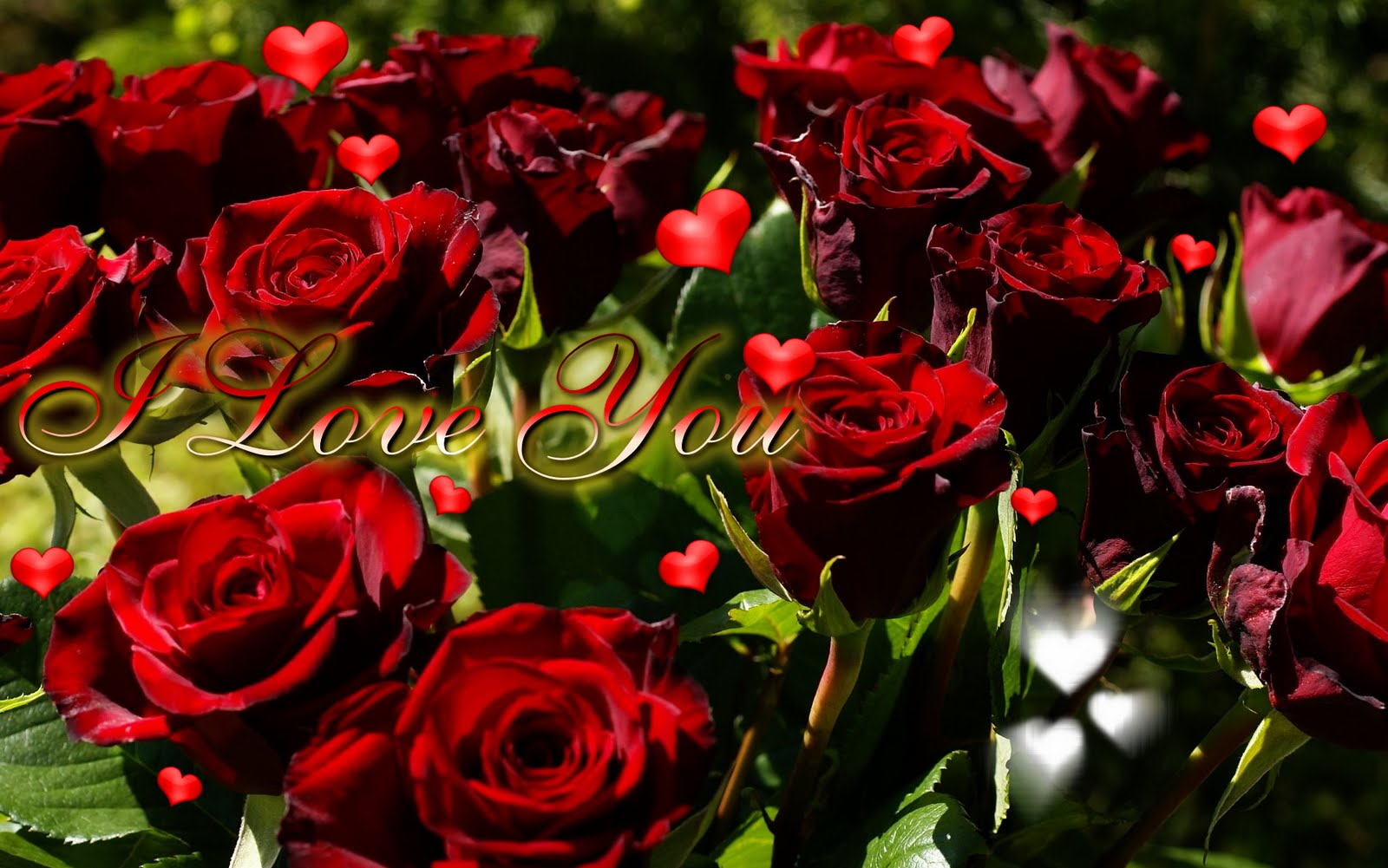 heart and roses background - photo #18