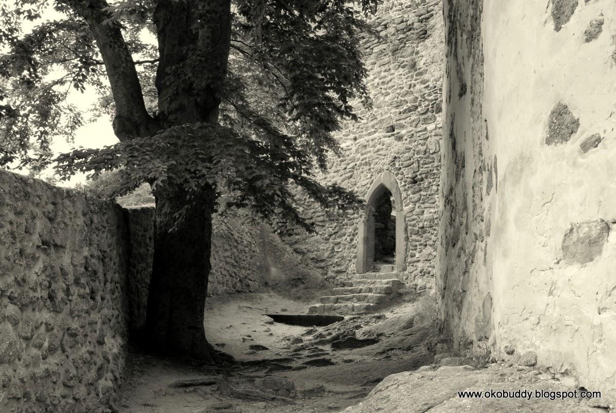 Wewnątrz murów Zamku Chojnik.
