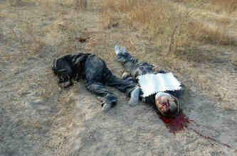 Zetas Cartel Dead