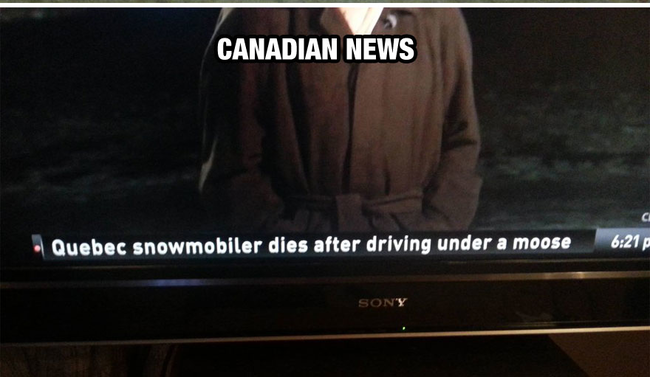 The most Canadian way to die. - Life In Canada Is So Much Different, And Colder, Than Life Anywhere Else.