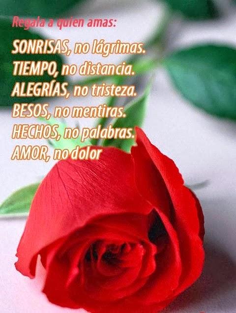 Imagenes de Amor con frases, Fotos bonitas gratis para descargar ...