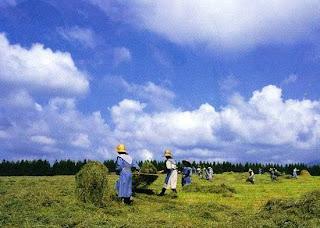 Hakodate Hokkaido, Japan (Best Honeymoon Destinations In Asia) 7