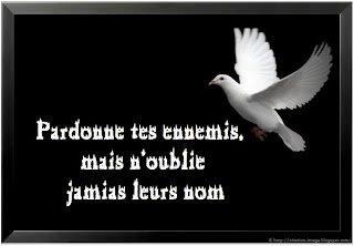 Citation pardon en image