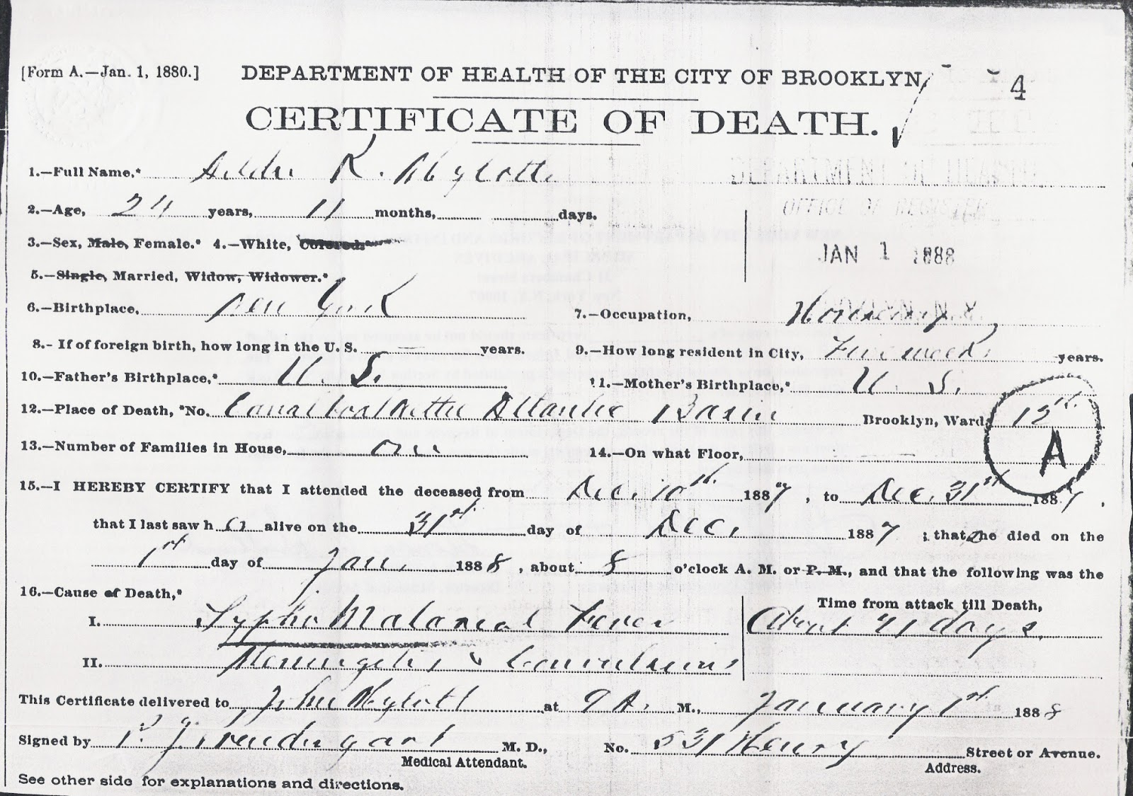 Francoamerican gravy family history stories from upstate new york cause of death typhomalarial fever meningitis and convulsions click on image for more detail yadclub Images