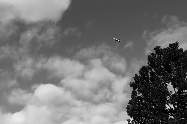 Fly, fliegen, Flugzeug am Himmel in der Luft