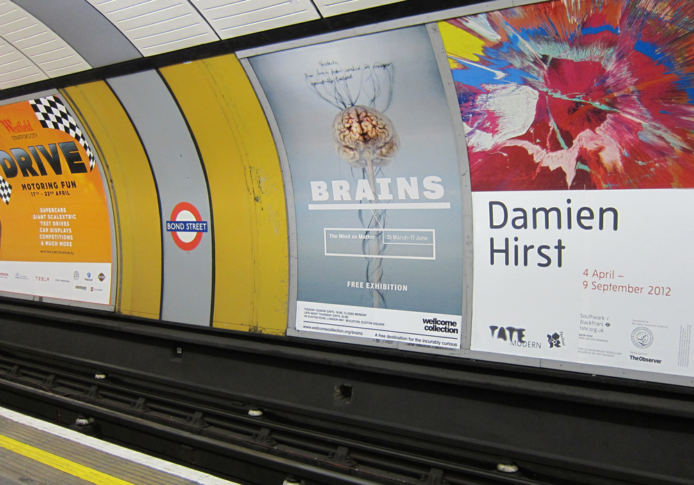 graphic design for Brains at the Wellcome Collection, London