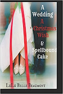 A cozy, magical, romantic Christmas book!