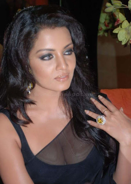 celina jaitley hot boob show in saree