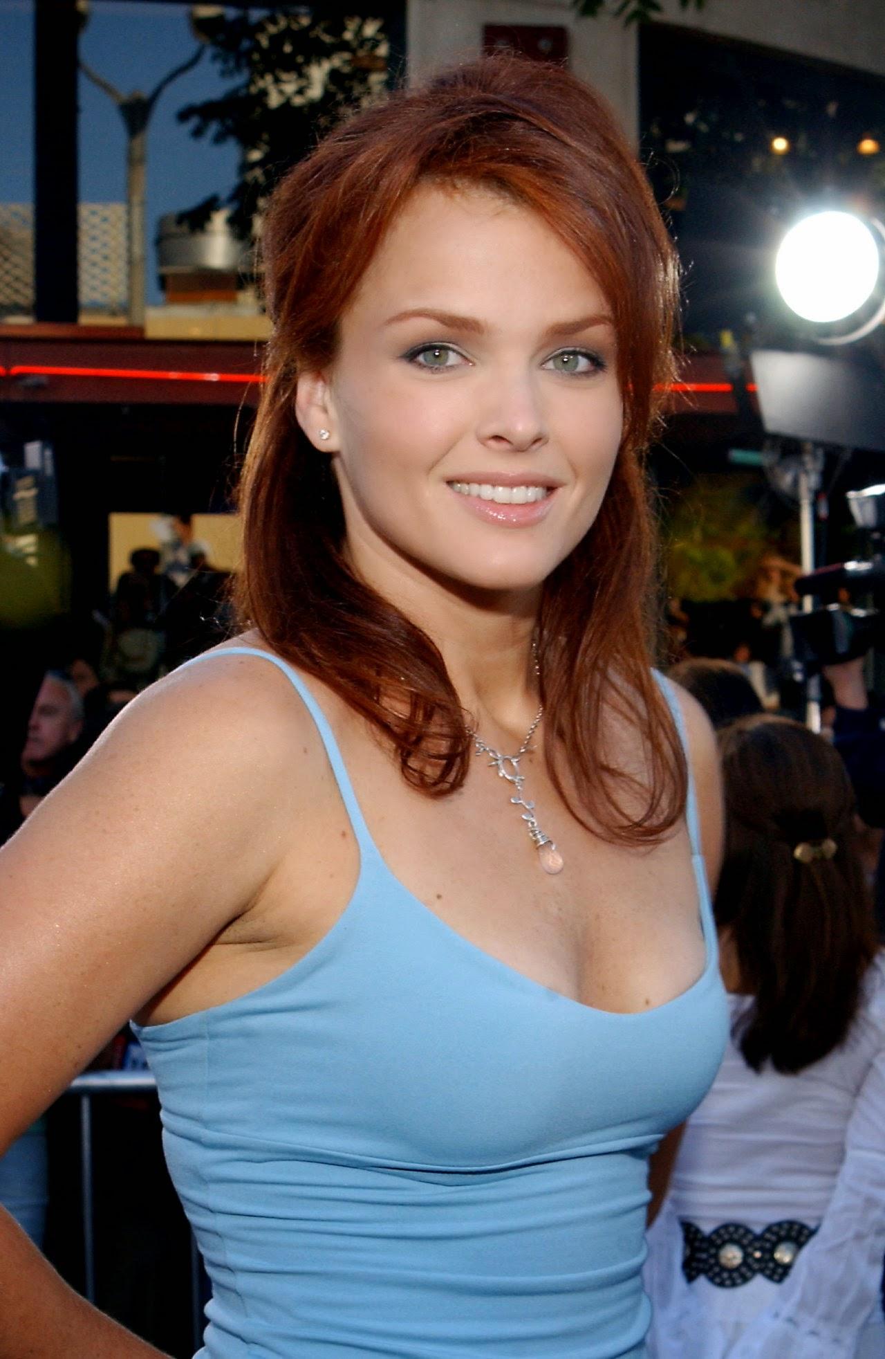 Dina Meyer summary   Film Actresses