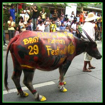 [BATAC] Ilocos Norte: A Parade of Colorfully Painted Carabaos