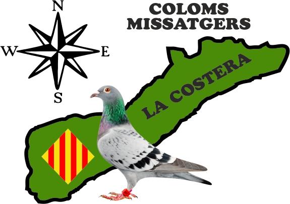 Club Coloms Missatgers La Costera: ANATOMÍA DE UNA PALOMA. Por ...