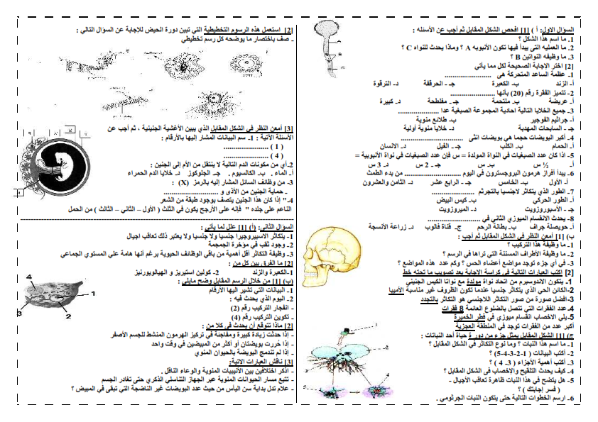 امتحان دعامة وتكاثر ممتاز - احياء_ 2015 25_001