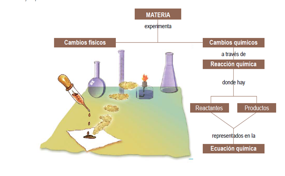 las reacciones qu micas reacciones qu micas On cambios fisicos y quimicos en la cocina